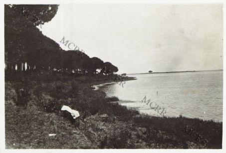 Belvedere - La pineta di S. Marco