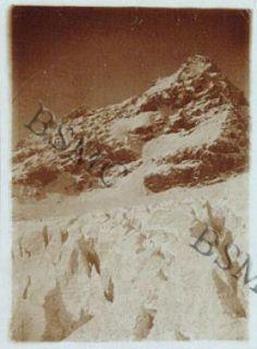 [...] ghiacciaio dello Zebrù da Capanna Milano, ottobre 1918