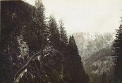 Passo di Monte Croce carnico.