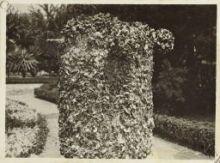 Pilone cilindrico ricoperdo di mitili.