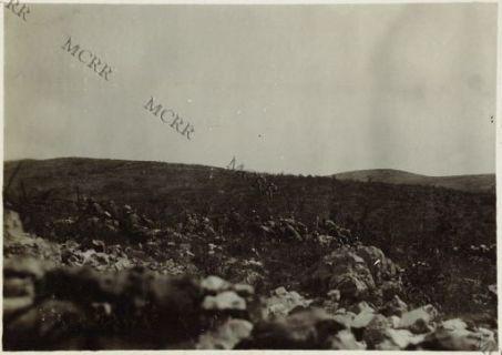 Fanterie in azione nella regione di Pietra Rossa