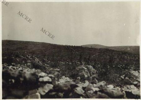 Azione di fanteria nella regione di Iamiano