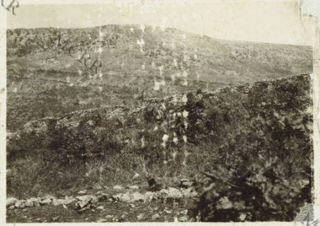 Avanzata di fanteria presso Iamiano