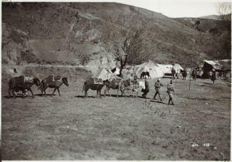 Fronte albanese. Attendamenti