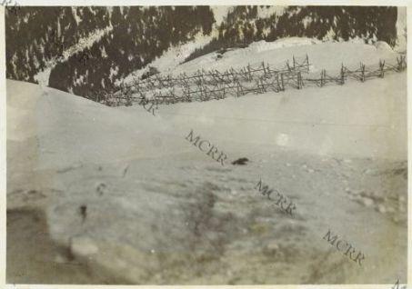 Passo del Cavallo: i reticolati austriaci visti dalle nostre linee