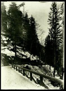 """1051.10Arm.Kmdo.(""""Rohr""""). Fotografia dell'esercito Austro-Ungarico"""