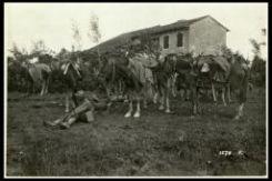 Cavalleggeri che bivaccano presso Fornaci