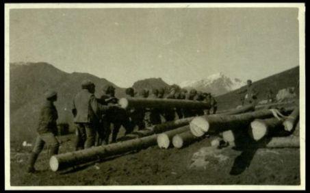 Trasporto di tronchi a Casera Zermule