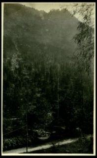 Nostra teleferica in Valle Raccolana
