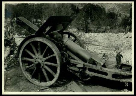 Cannone catturato