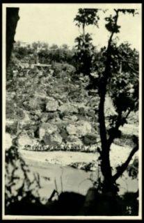 Lungo l'Isonzo: cavalli al coperto dei tiri nemici