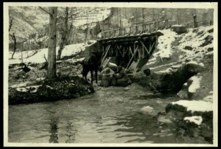 Val Posina. I rifornimenti d'acqua per le truppe in linea.
