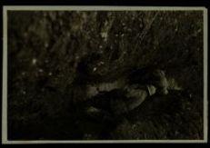 Fra Brenta e Piave per lo sgombero dal fango nei camminamenti di 1^ linea sul Tomba