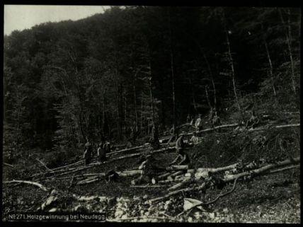 Holzgewinnung bei Neudegg. Fotografia dell'esercito Austro-Ungarico
