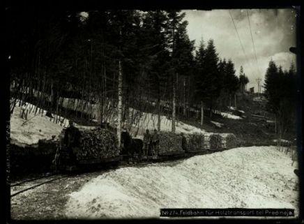 Feldbahn für holztransport bei Predmeja. Fotografia dell'esercito Austro-Ungarico