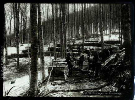 Holzlager bei Predmeja. Fotografia dell'esercito Austro-Ungarico