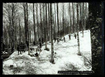 Holzgewinnung bei Predmeja. Fotografia dell'esercito Austro-Ungarico
