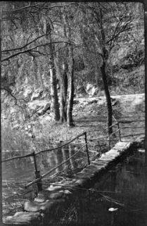 Valle dell'Adige: Passerella sul fiume