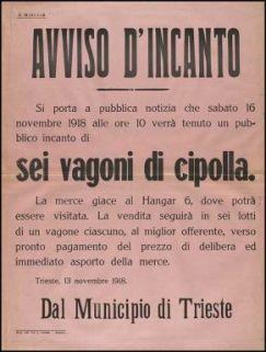 Avviso d'incanto / Dal municipio di Trieste