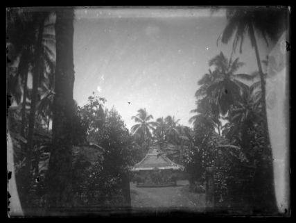 [Asia] : Costruzione orientale tra palme e una fitta vegetazione