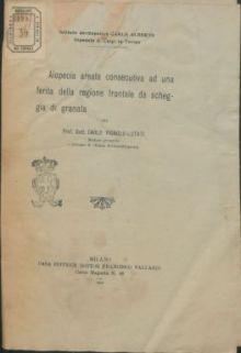 Alopecia areata consecutiva ad una ferita della regione frontale da scheggia di granata / pel Carlo Vignolo-Lutati