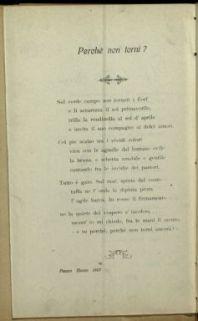 20 luglio 1916 / [Giuseppe Gallinelli]
